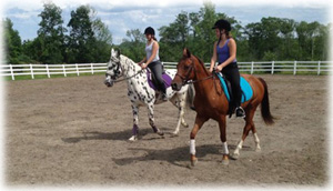 We Offer Riding Lessons